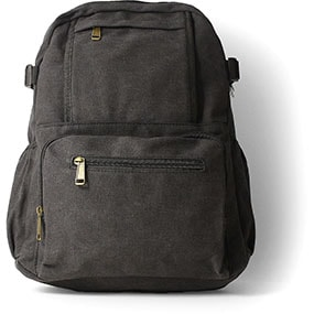 Enzo Canvas Backpack in Black for $50.00