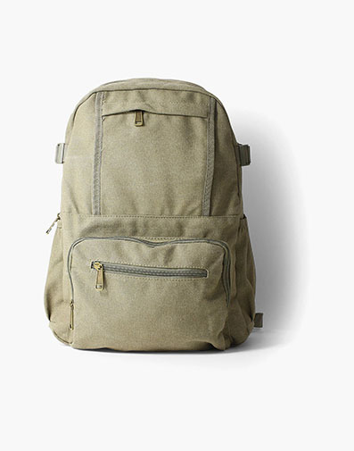 Enzo Canvas Backpack in Green for $50.00